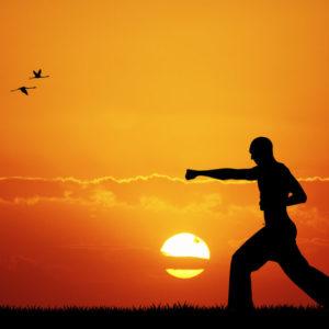 Tenue kung fu